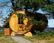 saunavapor