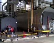 ¿Qué sabe sobre los generadores de vapor?